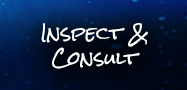 Inspect and Consult